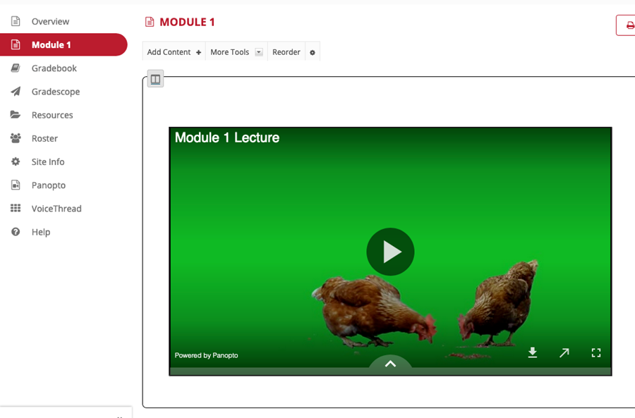 Screenshot showing Panopto video embedded directly on a lesson in Sakai